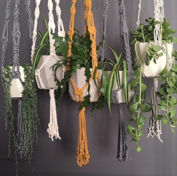 macrame plant hangers with plants