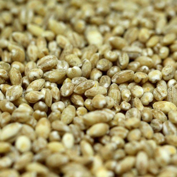 uncooked pearl barley