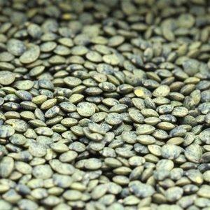 puy lentils uncooked