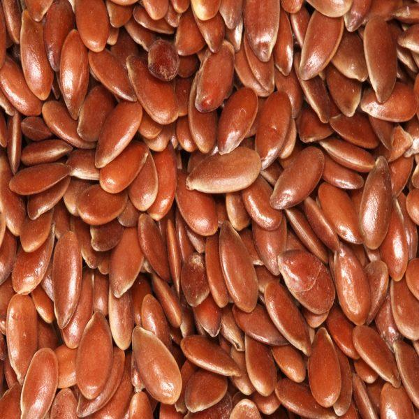 linseed seeds