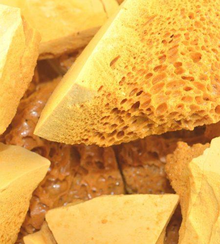chunks of honeycomb